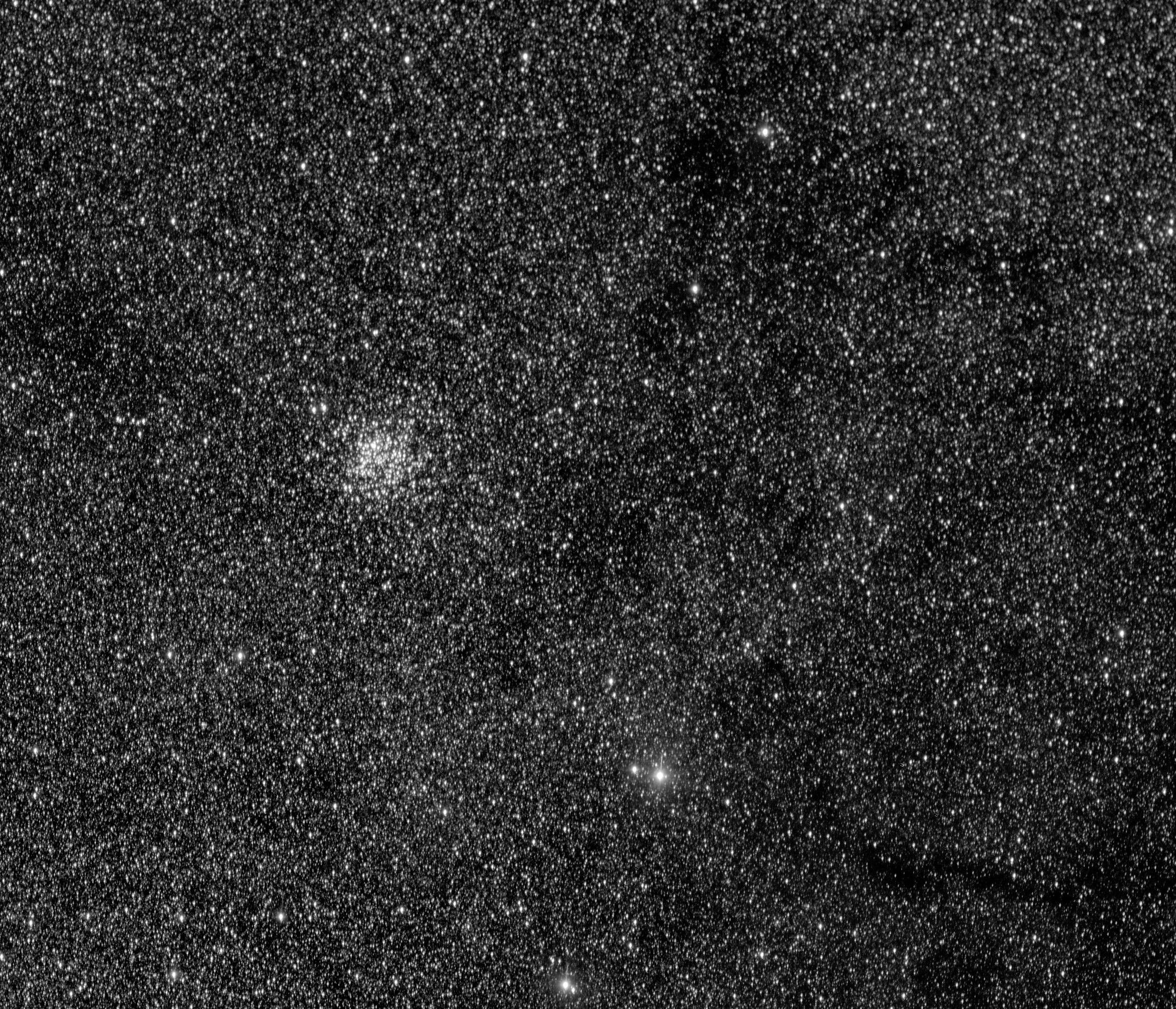 Houston Westbury Gardens: Houston Astronomical Society