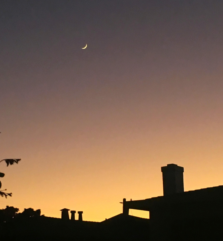 nsn-evening.jpg