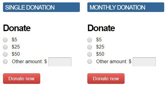DonateForm.JPG